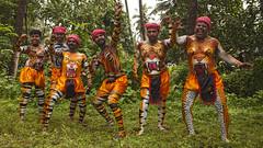 Tiger Dance Festival (Sharpshooter Alex) Tags: tiger dance festival india indian culture trees grass painted bodies men male asia travel kerala pulikai onam