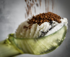 grainy condiment (Uniquva) Tags: macromondays condiment icecream chips