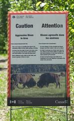 Sign (iDrifter) Tags: bison elkislandpark buffalo sign warning trek trail hiking walk