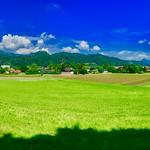 Fields near Kufstein, Tyrol, Austria thumbnail