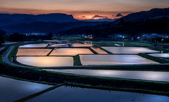 Rice fields in last Golden hour (kellypettit) Tags: ricepaddies ricefields sunset goldenhour bluehour colours light dark contrast kellypettitphotography japan gunmaprefecture kawabavillage numata landscape nature manmade reflections blueandorange beautiful enchanting tranquil