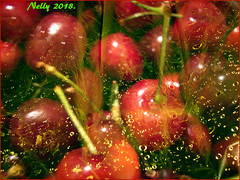 *Fruits... (MONKEY50) Tags: fruit red green yellow colors art digital pentaxart abstract drops may spring water cherry macro dewdrops droplet drop flickraward nature musictomyeyes cherries autofocus pentaxflickraward hypothetical awardtree waterdropsmacros netartii contactgroups beautifulphoto