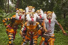 Tiger Dance Festival (Sharpshooter Alex) Tags: tiger dance festival india indian culture trees grass painted bodies men male masks asia travel pulikali kerala onam
