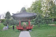 Ботанічний сад імені Гришка InterNetri  Ukraine 066