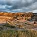 Alberta Badlands View