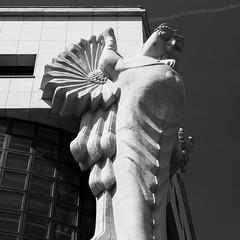 Technische Universität Wien (Lú_) Tags: technischeuniversitätwien vienna architecture carving contemporary gargoyle library modern owl square squareformat brunoweber
