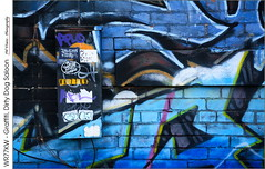 WR77KW – Graffiti, Dirty Dog Saloon (jwvraets) Tags: hamilton kingwilliamstreet 77 dirtydogsaloon bar nightclub wall graffiti box telecombox wr77kw blue colourful opensource rawtherapee gimp nikon d7100 afsdxnikkor18105mmvr
