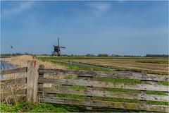 Donkse Laagten (Peter Jaspers) Tags: frompeterj© 2018 olympus zuiko omd em10 1240mm28 spring alblasserwaard groenehart mill fence fenced hff happyfencefriday holland netherlands landscape donkselaagten bicycletour