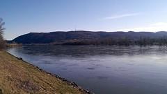 Along_the_Danube_3 (rhomboederrippel) Tags: rhomboederrippel htc onemini april 2018 europe austria loweraustria river danube korneuburg riverbanks wienerwald