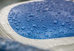 A Soaker Day. (Omygodtom) Tags: raindrop water seat bike bikeoregon bokeh gloomy macro tamron90mm nikon dof d7100 digital