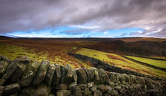 over the wall (explored) (Phil-Gregory) Tags: nikon naturephotography naturalphotography national nature nationalpark nice iamnikon d7200 derbyshire dof wall stonewall stanageedge tokina tokina1120mmatx 1120mm 1120mmproatx color colour clouds cloudscape lowcloud peakdistrict uk