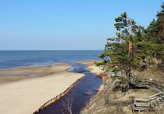 DSCN8200 (Mimi Serada) Tags: gulfofriga pabaži inčupe saulkrasti latvija