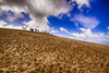 Dune du pilat III (Salva Pagès) Tags: duna dune dunedupilat pylasurmer arcachon bordeaux cel cielo sky azul blau blue