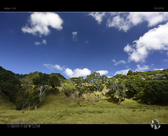Blue Sky Thinking (tomraven) Tags: blue bluesky trees hillside bay clouds sky sun green tomraven aravenimage q22018 nikon1 v3