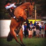 Leandro Bittencourt thumbnail
