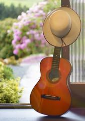 """Wherever I hang my hat ....."" (Elisafox22) Tags: elisafox22 sony nex7 helios442 helios lomo madeinussr 258 8blade vintagelens hsos smileonsaturday hat sunhat hatsandco guitar doorway lobby hall door glass open garden dof bokeh sunshine indoors elisaliddell©2018 hcs guitarlove"