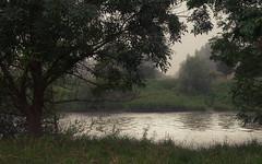 Flow, River, Flow (Netsrak) Tags: baum bäume dunst europa europe landschaft meindorf natur nebel sieg fog haze landscape mist