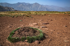 ⵉⴷⵓⵔⴰⵔⵏⵓⴰⵟⵍⴰⵙ, Morocco (::ErWin) Tags: africa afrika atlas maroc marokko جبالالأطلس ⵉⴷⵓⵔⴰⵔⵏⵓⴰⵟⵍⴰⵙ marrakechtensiftalhaouz ma