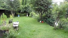 me in the garden (Katvarina) Tags: tightlaced crossdress crossdressing crossdresser transgender tgirl tgurl transgirl kat