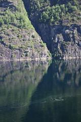 Arrow to the right (Sven Bonorden) Tags: cliff felswand felsen geirangerfjord norway norwegen norge mirror spiegel spiegelbild pfeil arrow green grün