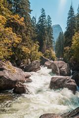 Yosemite (Bob Ward Media) Tags: yosemite national parks america travel exploration usa park nature halfdome rapids rocks