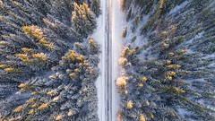 winter forrest (2kreviews) Tags: adventure aerial beautiful birds eye view bright calm christmas cold color discovery environment evergreen forest frost frozen high angle shot ice landscape nature outdoors peaceful perspective pine road scenery scenic season snow snowy sunlight travel trees weather winter wood