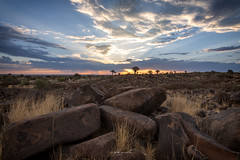 Namibia: Quivertree forest sunset (Exper!ence it) Tags: africa namibia quivertree forest sunset nature hiking 4x4 self drive nikon d750