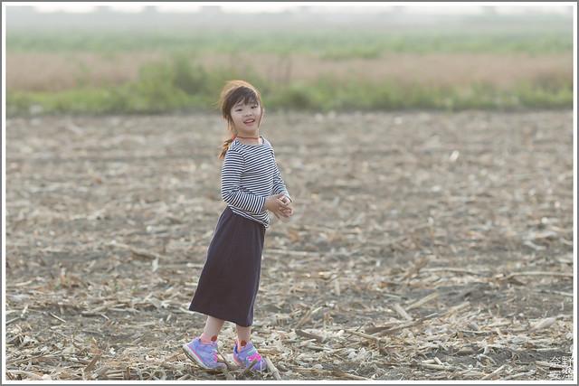 3月台南 親子寫真可以這樣拍 木棉花 蜀葵 小麥 一次讓你拍個夠 (66)