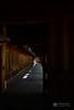 Indoor passage of Kashihara-Jingu Shrine (橿原神宮) (christinayan01 (busy)) Tags: architecture building perspective nara japan shrine timber