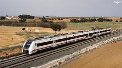 449 en Higueruela (lagunadani) Tags: renfe paisaje higueruela albacete caf 449 tren ferrocarril automotor electrotren