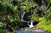 From the Kuloa Point Trail at Kipahulu Area : 'Valley Isle Excursions'– the incredible Maui tour to Hana…and Haleakalā. (biswarupsarkar72) Tags: hawaii pacificocean pacificislands pacificseabeaches maui usa tourisminusa travellinginusa sea seabeaches wailea grandwailea nikon nikond7000 samsung samsungmobilephotography samsungmobileon7pictures nikonphotography islandsinpacificocean passionoftravellinginusa photojournalism biswarupsarkar biswarupsphotography biswarupsphotographicjourney islandsofhawaii toursinhawaii tourisminhawaii charmsofhawaii natureofhawaii travellinginhawaii experienceinhawaii pacific pacificbeauty enchantinghawaii valleyisleexcursion haleakalanationalpark hana