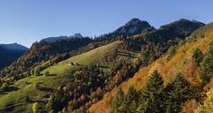 La Gruyère - Charmey / Ref.CH106 (FRIBOURG REGION) Tags: suisse schweiz switzerland lagruyère charmey automne autumn herbst prealps préalpes voralpen montagne mountain berg nature natur outdoor