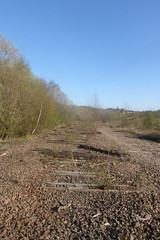 Old railway trackbed between Catcliffe and Treeton,  Sheffield  (former SDR route)   April 2018 (dave_attrill) Tags: catcliffe sheffield railway line disused trackbed remains goods sdr sleepers abandoned treeton ballast april 2018 sheffielddistrictrailway southyorkshire