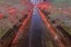 Meguro River Vibes (703) Tags: japan megurariver pentaxk3ii reflection spring tokyo cherryblossom cherryblossoms cityscape flower fullbloom fullblooming night nightscape nightscene nightview pink river sakura さくら サクラ ソメイヨシノ ピンク リフレクション 夜景 日本 春 東京 桜 満開 目黒川 花 目黒区