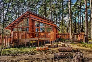 Cosy cabin, in Cropton Forest!😊🌲