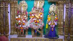 Radha Krishna Dev Sandhya Darshan on Sun 15 Apr 2018 (bhujmandir) Tags: radha krishna dev lord maharaj swaminarayan hari bhagvan bhagwan bhuj mandir temple daily darshan swami narayan sandhya