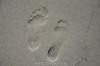 20180408 MARKGRAFENHEIDE (10).jpg (Marco Förster) Tags: dobermann hunde natur markgrafenheide ostsee strand frühling