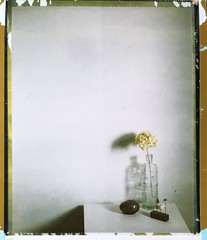 How do I fill the space you left behind? (~ Meredith ~) Tags: filmwins filmisalive stilllife intrepidcamera largeformat expiredfilm polaroid polaroidweek