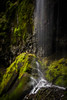 Waterfall (Eric DeBord) Tags: waterfall naturallight creek moss oregon temperaterainforest nw nature water willamettenationalforest northwest canontse24mmf35lii canon cascademountains forest 6d