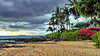 Maui, Makena Beach (gerard eder) Tags: world travel reise viajes america northamerica usa unitedstates hawaii maui beach strand paisajes panorama playa makena makenabeach palmeras palmen palmtrees landscape landschaft natur nature naturaleza outdoor clouds wolken nubes tropical tropicalisland