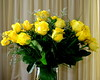 Three dozen roses (diffuse) Tags: thirtysix threedozen roses yellow bf jf florist