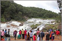 7952 - Pykara waterfalls, Ooty (chandrasekaran a 50 lakhs views Thanks to all.) Tags: pykarawaterfalls ooty nilgiris tamilnadu india travel