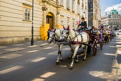 Fiaker - convoy (a7m2) Tags: vienna rotenturmstrasse fiaker kutsche stephansplatz travel tourismus innerestadt culture history sehenswürdigkeiten landmark oldtown seesightingtour