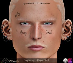 Lush Always Face Tattoo (Kayshla Aristocrat) Tags: faceart faceink facetattoos maletattoos men accessories lush designer kayshlaaristocrat catwa appliers omega model blondemodel sl secondlife virtualworld