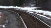 Cat tracks in the snow (Trevdog67) Tags: cattracks railwaytracks train tracks cat kitty cattracksinthesnow playonwords uppermountainroad moncton nb411 cn cnrail cnr railway explorenb nikon d7500 sigma 100600mm 14x teleconverter april1st eastersunday 2018 boundarycreek