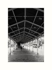Vertebra (oiZox) Tags: streetphotagraphy streetphoto street walking euskadi travellerbloger travel urbano fotourbana urban ombreeluci people depthoffield fotografare gente human happiness light zox xpro2 fujistas fujifilm fujixseries