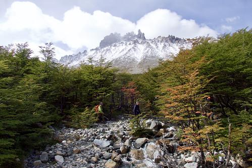 chile-patagonia-aysen-cerro-castillo-walking-near-nuevo-zealandes-views-forest-mountains