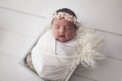 Evie 6th April 2018 (Carli Nicole Photography) Tags: newborn naturallighting newbornphotography naturallight naturalbeauty newbornsession beautiful babies babyphotography babyphotographer cute lifestylephotography lifestyle londonphotographer harpendennewbornphotographer hertforshirephotographer harpendenphotographer