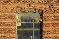 Just Another Bird in the Wall (sullivan1985) Tags: bird brick pigeon rockpigeon harrison nj newjersey hudsoncounty northjersey industrial urbex wall factory window