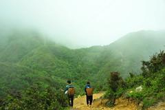 Vietnam (sami 51) Tags: sapa fansipan mountain vietnam nord brouillard cloud outdoor landscape nikon